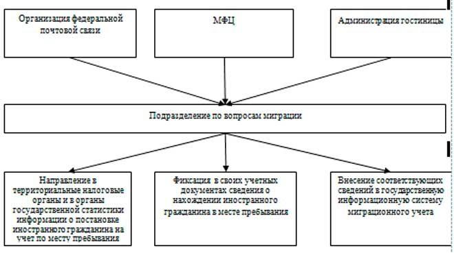 Изображение - Порядок действий и документы для регистрации иностранного гражданина по месту пребывания 11-660x369