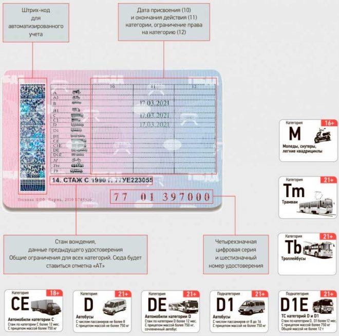 2 18 660x653 - Что означают графы в водительском удостоверении