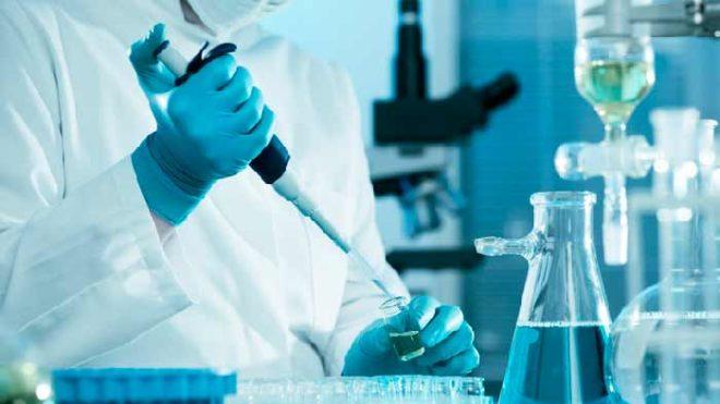Ходатайство о назначении экспертизы ДТП, образец и пример
